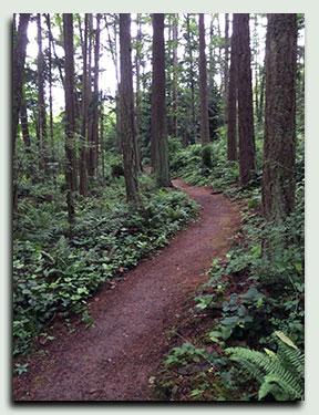 Guemes Mountain Trail